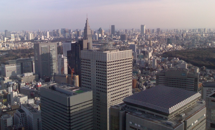 The view from the top of the Tokyo Metropolitan Government Office.