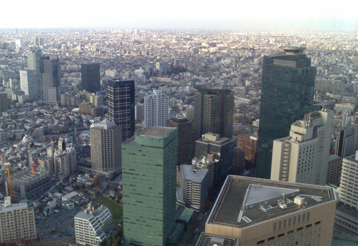 The view from the other side of the Tokyo Metropolitan Government Offices. I could see Mount Fuji from here; unfortunately it doesn't show in the photo.