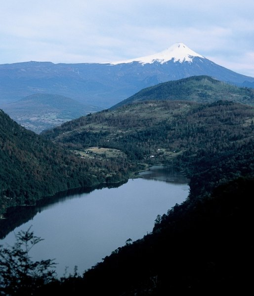 The volcano we climbed seen from a National Park close to Pucon.