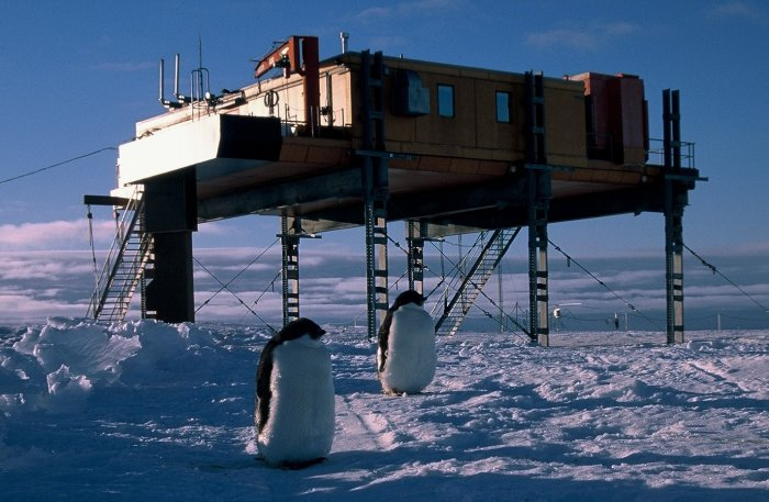 A pair of Adelie penguins in front of the Piggott building at Halley.